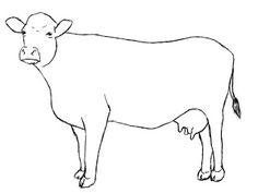 How To Draw A Cow Draw Central Cow Drawing Paper Drawing Drawing Sketches