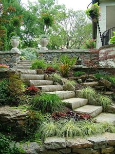 Stones steps and border garden