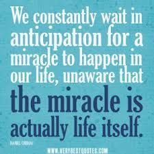 Image result for quotes from movie miracle from Heaven