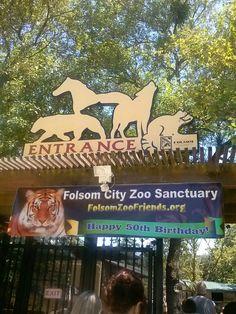Folsom Zoo in Folsom, CA [ BruceChampionRealEstate.com ] #Folsom #RealEstate #Premier