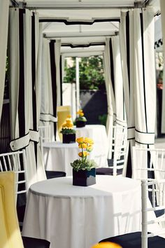 Yellow pop's |. exterior drape in striking white piped in black