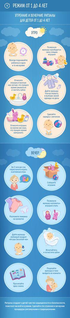 Инфографика по теме Режим от года до четырех лет. Сообщество современных родителей agulife.ru.