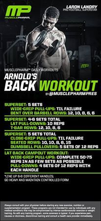 Arnolds Back Workout Click for an AMAZING back workout for WOMEN!