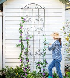 Montebello Tall Trellis is beautifully crafted with an ornate scroll design. Versatile enough to be mounted to a wall, staked in the ground or left to stand alone. Iron Trellis, Arbors Trellis, Diy Trellis, Trellis Design, Trellis Ideas, Metal Garden Trellis, Wall Trellis, Trough Planters, Garden Arbor