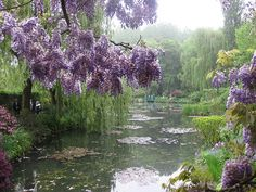 Monets garden by avilasal, via Flickr Claude Monet, Beautiful World, Beautiful Gardens, Beautiful Places, Impressionist Paintings, Landscape Paintings, Monet Garden Giverny, Parks, Gardens Of The World