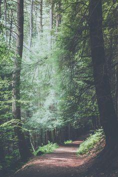 Este paisaje es perfectoo!!*_*