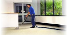 Professional Carpet Cleaners   House CleanerHouse Cleaner