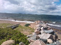 Tulliniemi, Hanko (Finland). Pic taken by my cell.