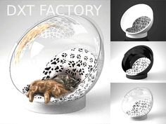Poltrona per gatti BallCat in plexiglass. Acrylic Furniture, Interior Design Website, Own Home, Vignettes, Snow Globes, Sweet Home, Etsy, Home Decor, Decoration Home