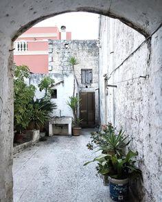 {Green}   Little vital space in #Salento