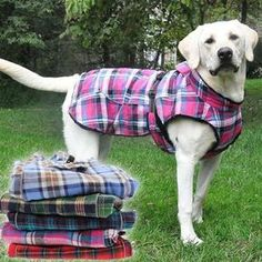 Toasty warm flannel dog coats lined in thick black faux fur to keep your dogs warm in the coldest weather. For small to extra large dogs. Labrador Retriever, Golden Retriever, Large Dog Coats, Large Dogs, Small Dogs, Large Dog Clothes, Dog Coat Pattern, Dog Winter Coat, Dog Clothes Patterns