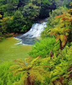 Reakohua Falls New Zealand North Island