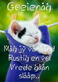 Afrikaanse Quotes, Goeie Nag, Good Night Sweet Dreams, Nighty Night, Good Night Quotes, You Lost Me, Special Quotes, Jesus Is Lord, Happy Quotes