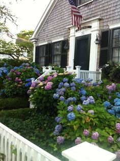 Cozy cottage Nantucket style with hydrangeas Nantucket Cottage, Nantucket Style, Nantucket Island, Beach Cottage Style, Beach Cottage Decor, Cozy Cottage, Coastal Cottage, Coastal Style, Beach House