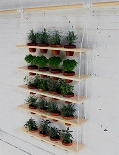 Need DIY garden projects and ideas to decorate your home outdoor? Find 101 DIY garden projects made with recycled materiel to upgrade your garden at no cost. Herb Garden Design, Diy Herb Garden, Garden Fun, Herb Gardening, Organic Gardening, Indoor Gardening, Indoor Herbs, Summer Garden, Plants Indoor