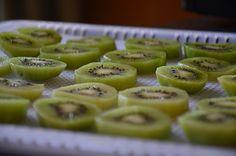 Drogen van kiwi in voedseldroger