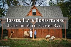 The notion of going 'old school' and designing a multi-use barn to keep everything under one roof has seen a rise in popularity. Horse Hay, Horse Barns, Horses, Horse Shelter, Goat Barn, Dream Stables, Homestead Farm, Future Farms, Farm Fun