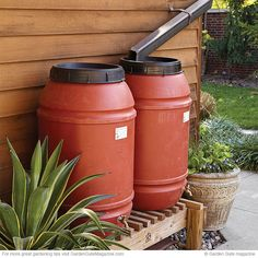 Easy rain barrel care | Garden Gate eNotes - use activated charcoal from pet stores