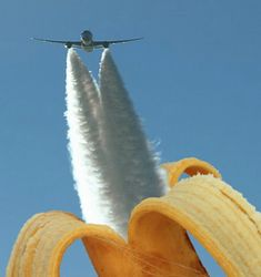 This aircraft's jet streams only look as if they are the flesh of the banana! …