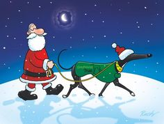 A special Christmas walk