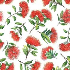 Explore your creative side and jump straight into your next quilting and sewing projects with the fun and vibrant Kiwiana Spot The Pohutukawa. Polynesian Art, Peacock Colors, Sheep Farm, Kiwiana, Red Background, Xmas Decorations, New Zealand, Cotton Fabric, Sewing Projects
