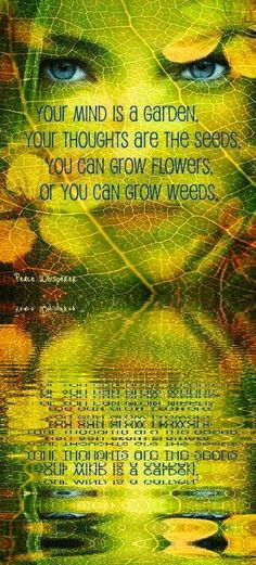 Your mind is a garden, your thoughts are the seeds, you can grow flowers or you can grow weeds