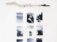 Accroche Photo Branche