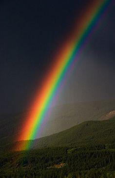 Somewhere Over the Rainbow, Way Up High ~ Jasper National Park, Alberta, Canada Love Rainbow, Over The Rainbow, Rainbow Colors, Rainbow Photo, All Nature, Amazing Nature, Science Nature, Beautiful Sky, Beautiful World