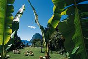 Lugano Villa Castagnola the incredible mixture of Mediterranean climat and Swiss lifestyle... What a welcome of spring...