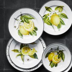 Meyer Lemon Dinnerware Collection | Williams-Sonoma