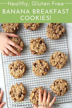 These healthy banana chocolate breakfast cookies are packed with oats and are sweetened with just bananas! They're high in fiber and protein, but tastes like cookies. #backtoschoolsnacks #glutenfreesnacks #easybreakfasts #healthybreakfastrecipes Gluten Free Recipes For Breakfast, Gluten Free Snacks, Gluten Free Breakfasts, Vegetarian Breakfast, Breakfast Dishes, Breakfast Ideas, Banana Breakfast Cookie, No Bake Oatmeal Bars, Gluten Free Banana