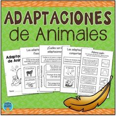 Adaptaciones de animales - Animal Adaptations Interactive Booklet in Spanish Physical Education Games, Health Education, Spanish Teaching Resources, Animal Adaptations, 5th Grade Classroom, Team Building Activities, Matching Games, Hands On Activities, Booklet