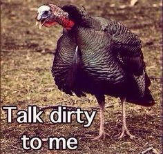 Part of my turkey calling lessons, you gotta talk dirty to them birds!