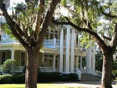 southern home with weeping willows