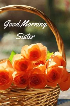 good-morning-sister-with-flowers Good Morning Sister Images, Good Morning Bible Quotes, Good Morning Beautiful People, Good Morning Saturday, Good Morning Images Flowers, Good Morning Picture, Good Morning Love, Morning Pictures, Morning Sayings