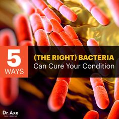 Gut bacteria benefits - Dr. Axe http://www.draxe.com #health #holistic #natural