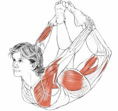 Yoga Therapy: Yoga for Depression   Dhanurasana - Bow Pose  www.globalyogatherapy.com