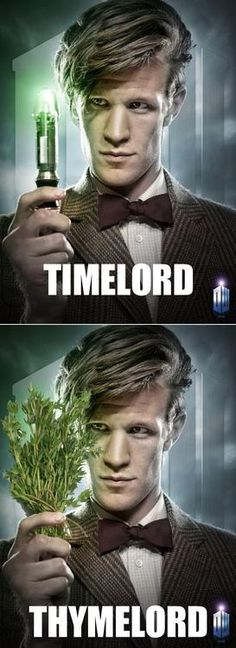 Time Lord, Thyme Lord