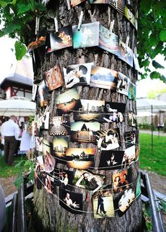 cute to have photos of the bride and groom throughout their relationship if they have an outdoor reception