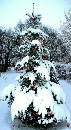 Beautiful Christmas tree from Denmark Primitive Christmas, Noel Christmas, Country Christmas, Outdoor Christmas, Winter Christmas, Vintage Christmas, Christmas Mantles, Primitive Crafts, Victorian Christmas