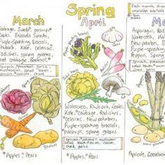 Image result for seasonal vegetable chart