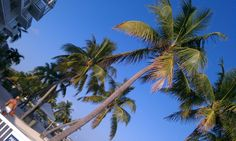 The Postcard Inn, Islamorada, Florida Keys http://www.youtube.com/user/Cabezababy?feature=mhee