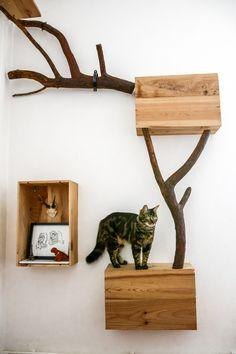 Arbre à chat avec des branches et du bois de récup'.