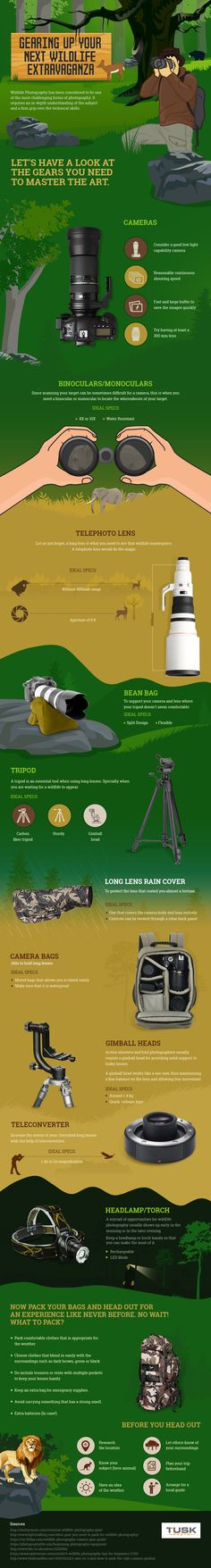 This handy infographic from Tusk is perfect for those who are into photography and want to up their wildlife photography game.  Find out exactly what photography equipment youll need to stand the best chance of capturing stunning wildlife shots.  Save  The post Photography Gear For Your Next Wildlife Adventure appeared first on Camping with Style Camping Blog | Activities  Glamping  Travel  Adventure.