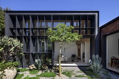 Baffle House | Clare Cousins Architects