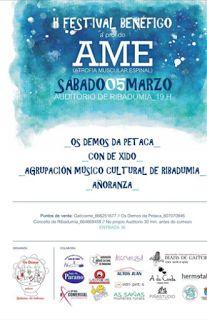 CORES DE CAMBADOS: II FESTIVAL A PROL DA AME