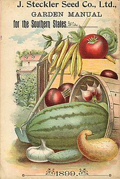 Vintage seed catalog #diycrafts #ecrafty #seedcatalogs