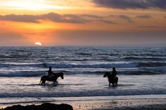 Horse Riding on Annestown Beach on the Copper Coast Geopark Beautiful Places To Visit, Horse Riding, Coast, Copper, Horses, Sunset, Beach, Outdoor, Sunsets