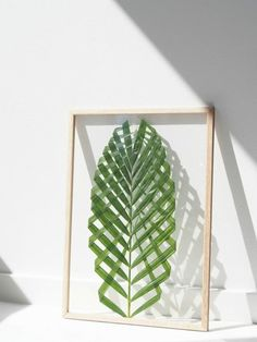 DIY a palm for a natural geometric art piece you can frame. Fold up the limbs of a large palm frond and encase it in a double-sided glass frame to make this stunning conversation piece.