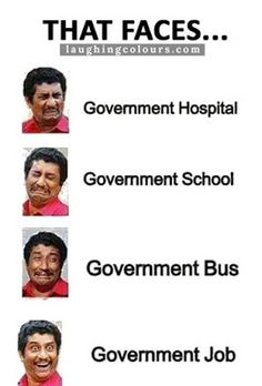 Image Of The Day, Government Jobs, True Facts, Funny Images, Jokes, School, Face, Humorous Pictures, Husky Jokes